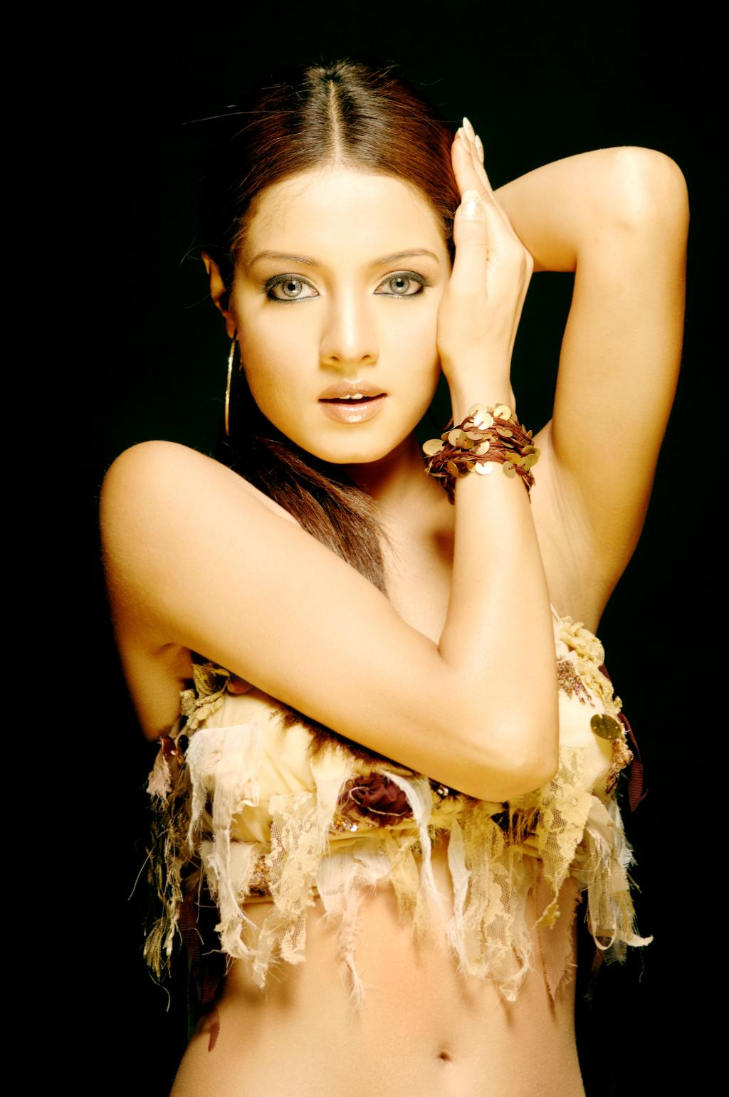 Celina Jaitley Hot Photos Gallery - Saree Sexy Pictures-9324