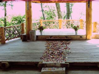 flower petals for a wedding
