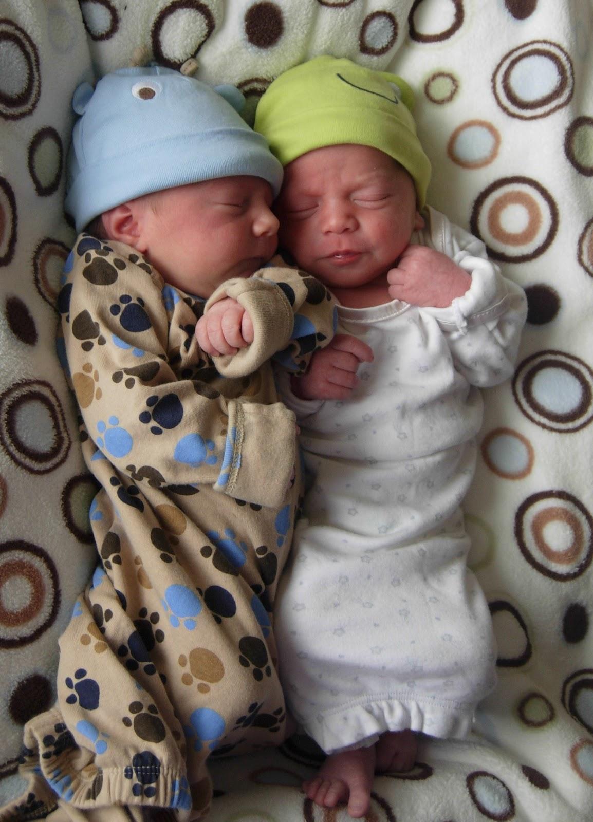 Newborn Twin Baby Boys In Hospital