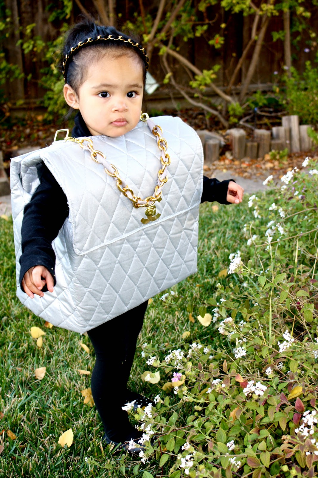 24bcb55afa77 Chanel Handbag Costume | Stanford Center for Opportunity Policy in ...