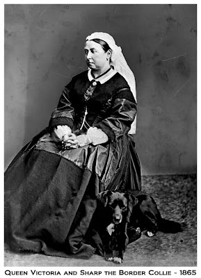 Queen Victoria and Sharp border collie 1865 large