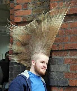 Random Stuff: Coolest Hairstyles!