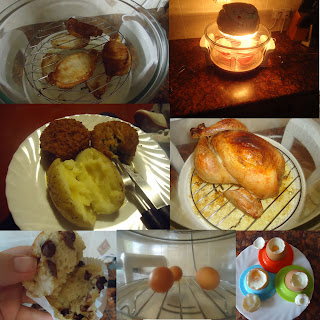 Samples of food I cooked in the Halogen Oven