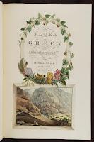 Η χλωρίδα της Ελλάδας-Flora Graeca