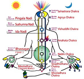 relationship between glands and chakras images