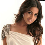 Actress Genelia D'souza Pictures
