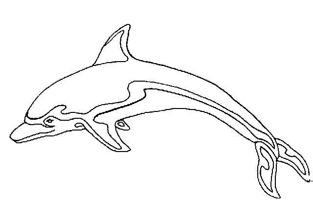Dibujo Delfin Para Colorear E Imprimir: Dibujos De Delfines Para Imprimir Y Colorear: Dibujo De Un