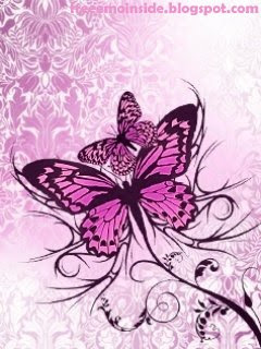 Butterfly Drawings With Color Pink