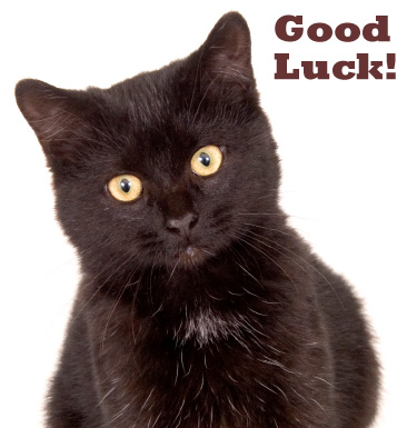 Black Cat - Good Luck!