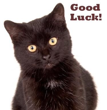 Black Cat - Good Luck!