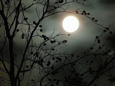 Resultado de imagen de noche de primavera