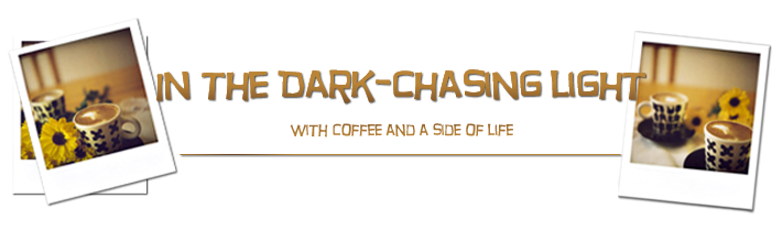 In the Dark—Chasing Light