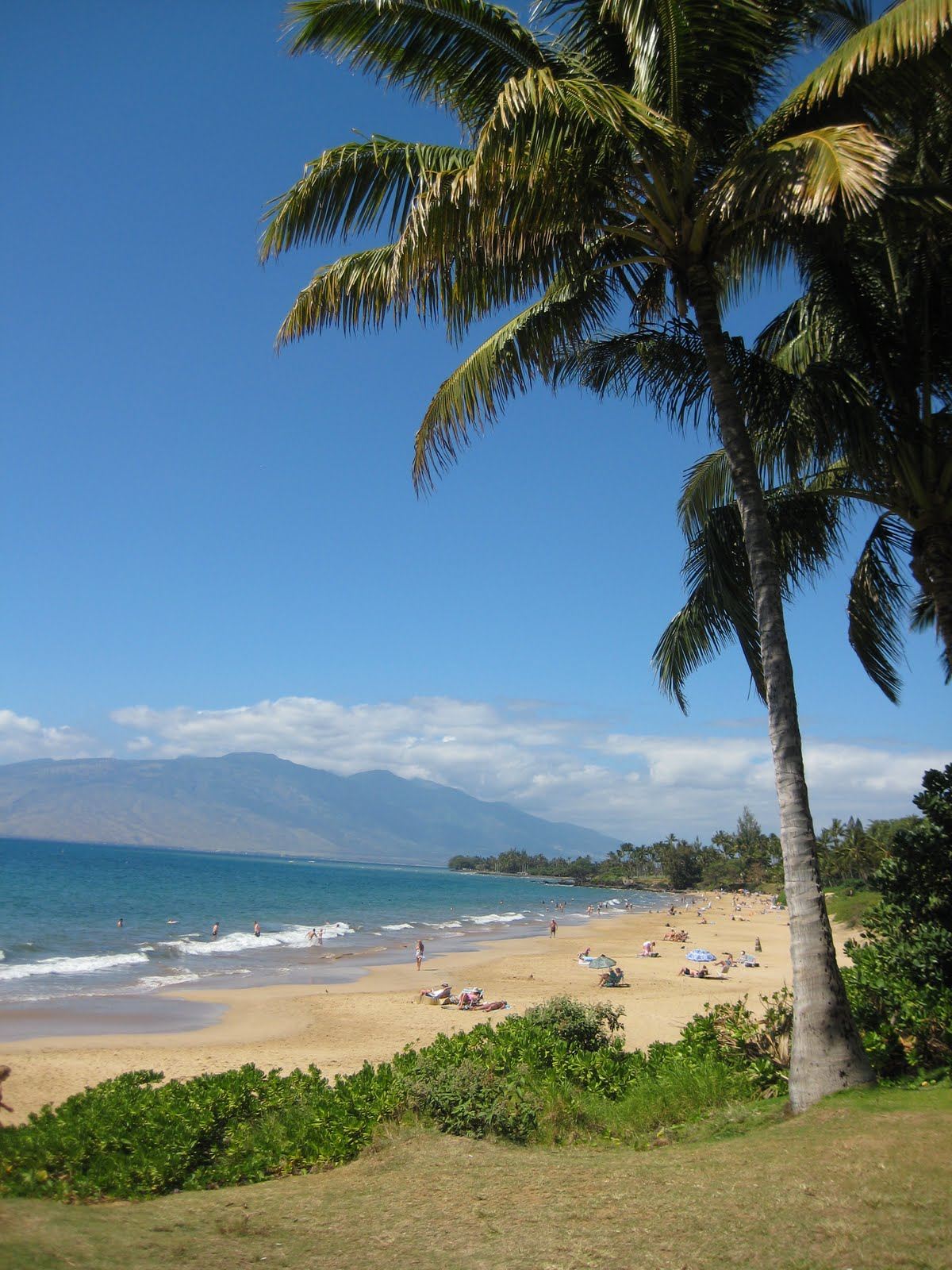 Maui Vacation Guide: Cheap Flights To Maui For Spring And