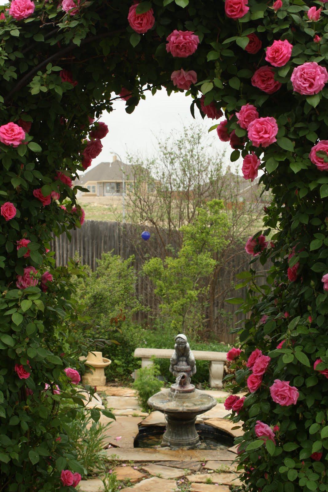 Roses In Garden: Love My Cottage Garden: Arbor Bliss