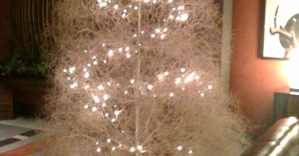 Delight By Design: Tumbleweed Tree