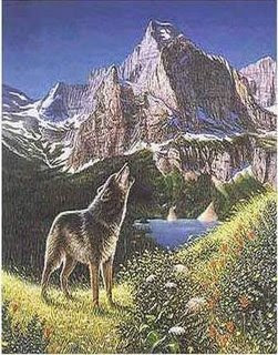 Eye tricks: Can you find all 5 wolves