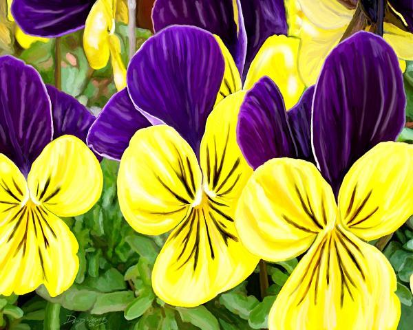 JoshB Graphic Design: Purple & Yellow