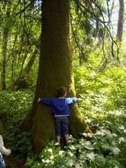Tree Hugger in Training