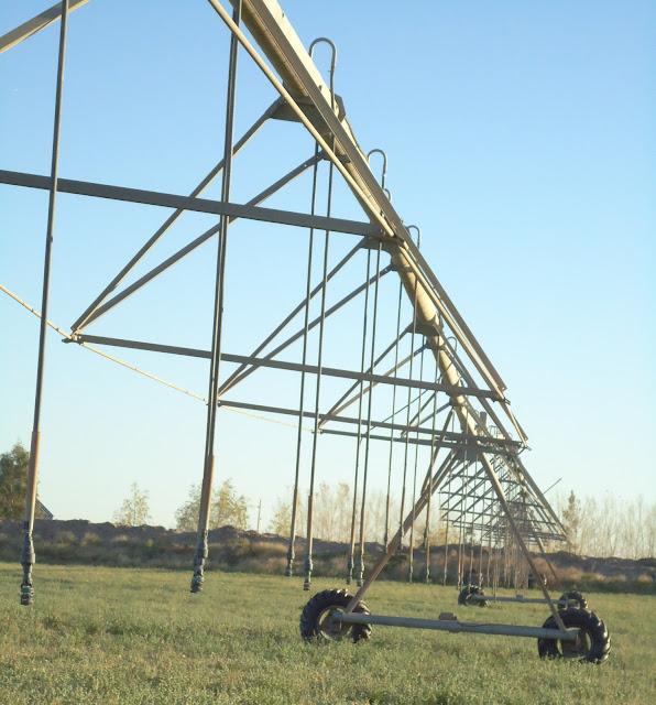 pivote central en La Pampa