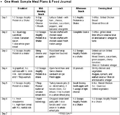 Sample Food Logs  Food Journal Sample
