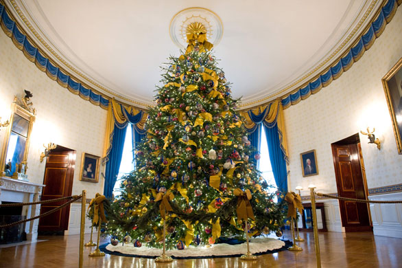 Rented Bliss: White House Christmas Tree Tradition