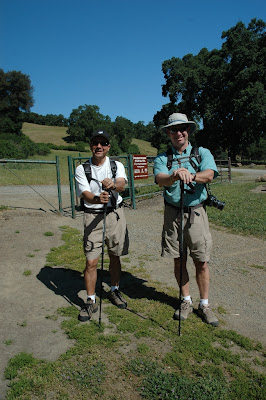 Jeff's Blog: Pleasanton Ridge Hike