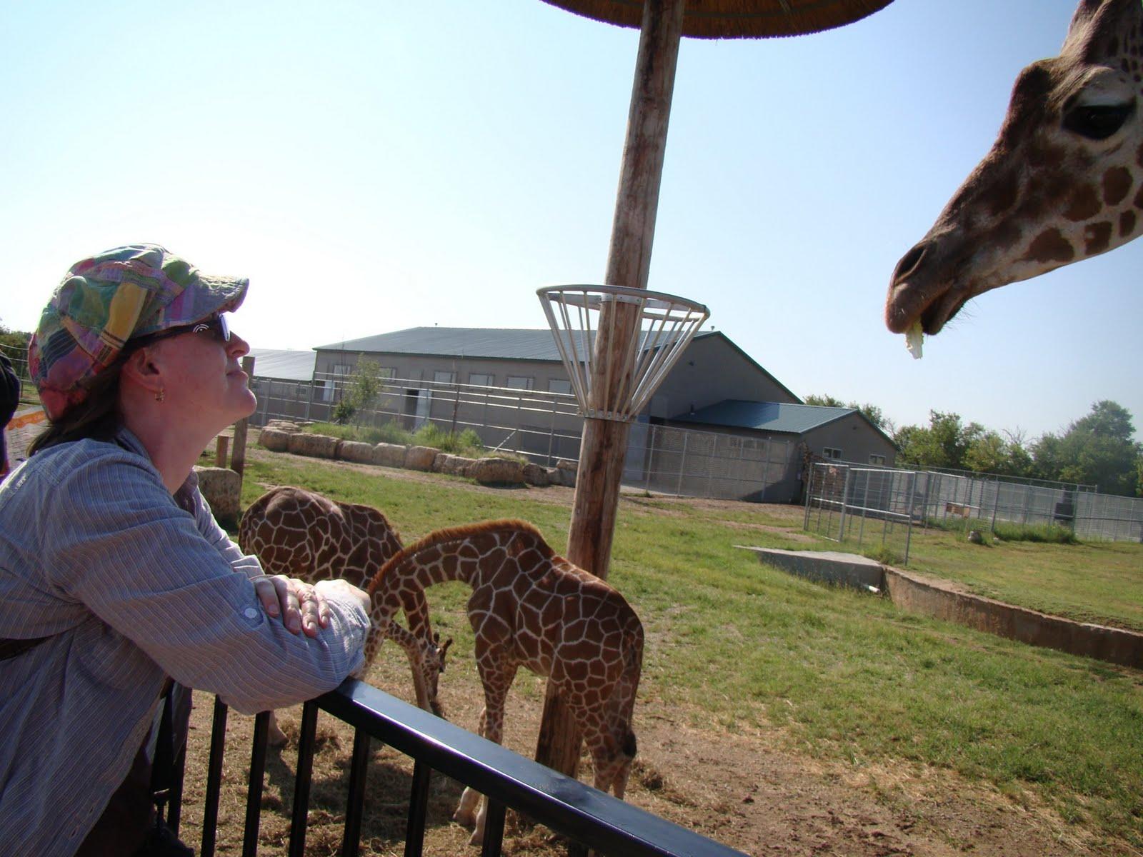Tanganyika Wildlife Park – Finding Joy in Him