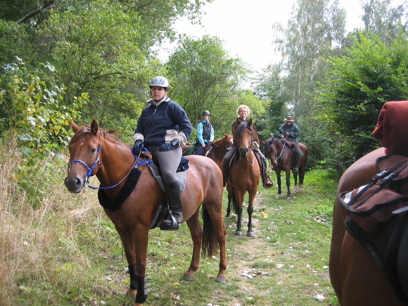 Pferdeleute kennenlernen