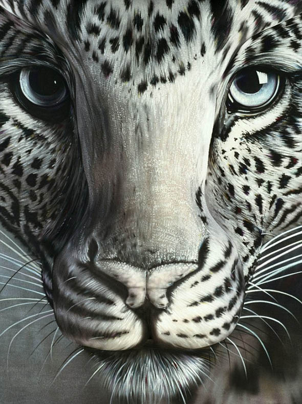 amazing illusion illusions painting optical animal leopard animals paint paintings visual cool tracy craig awesome artist ever tiger using painted