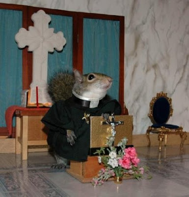 'Church' Squirrel