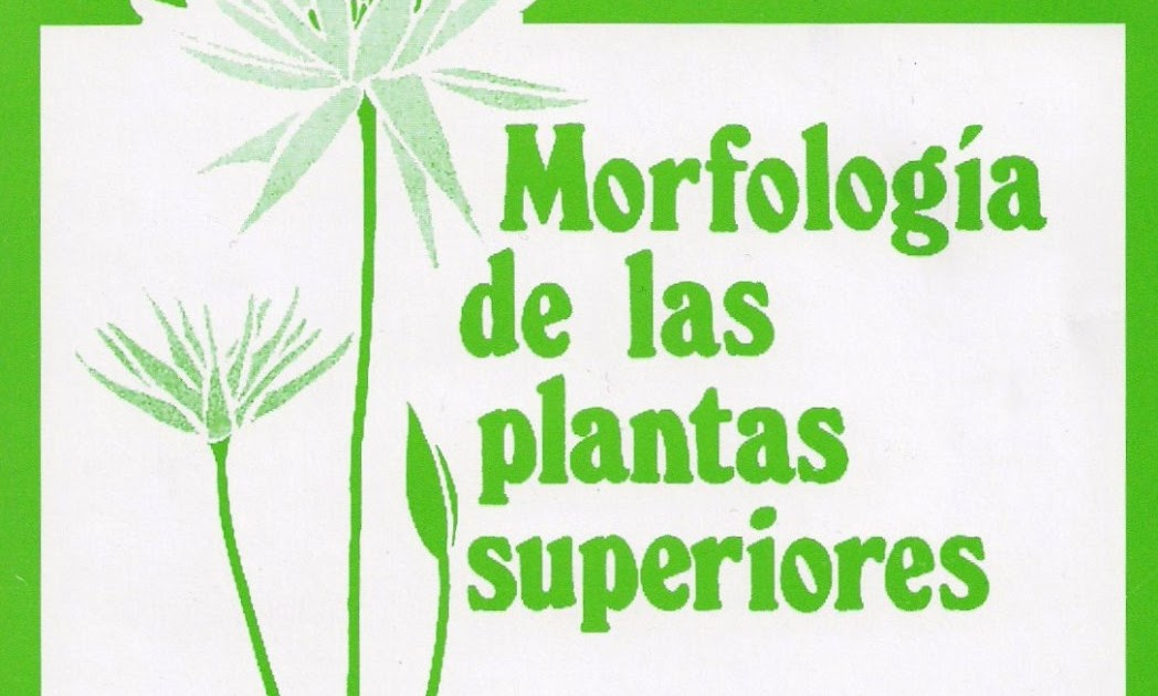 "INGENIERIA FORESTAL: Libro Botanica ""Morfologia De Las"