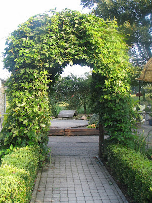 aux fer des champs pergola pour vigne vierge. Black Bedroom Furniture Sets. Home Design Ideas