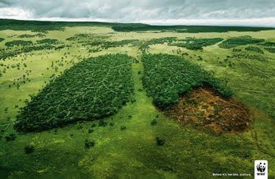 Natureza E Paz Anúncios Sobre O Meio Ambiente