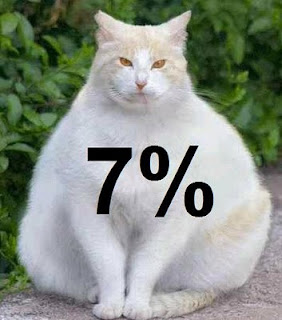 fat cat 7%