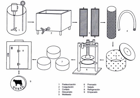 Avibert: Elaboración de Quesos Diagrama del proceso
