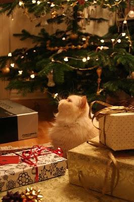 christmas - Bah Humbug Recovery