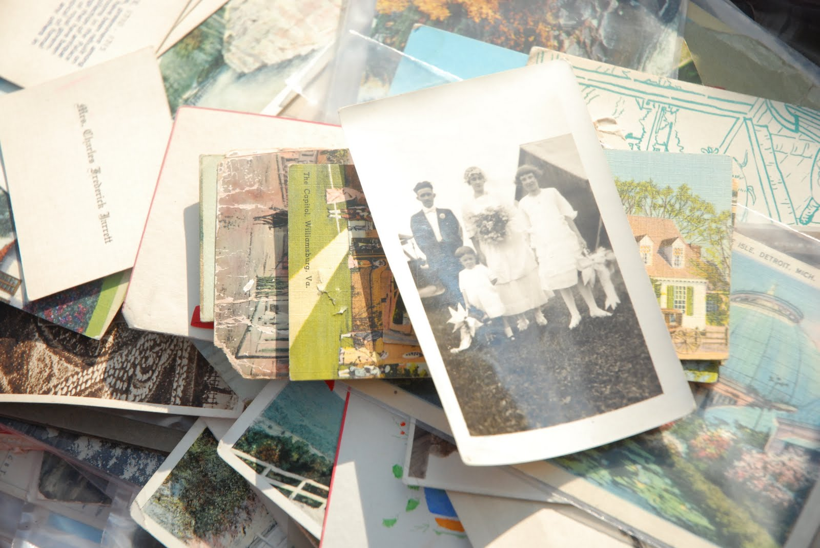Scattered Photographs Sare kumagai photographyScattered Photographs