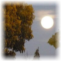 A Perigree Moon in Napa