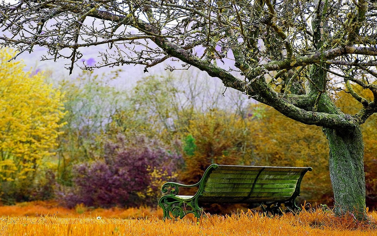 Espocoserio Wallpaper Autumn Landscape