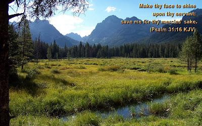 Psalm 31:16 Bible Verse
