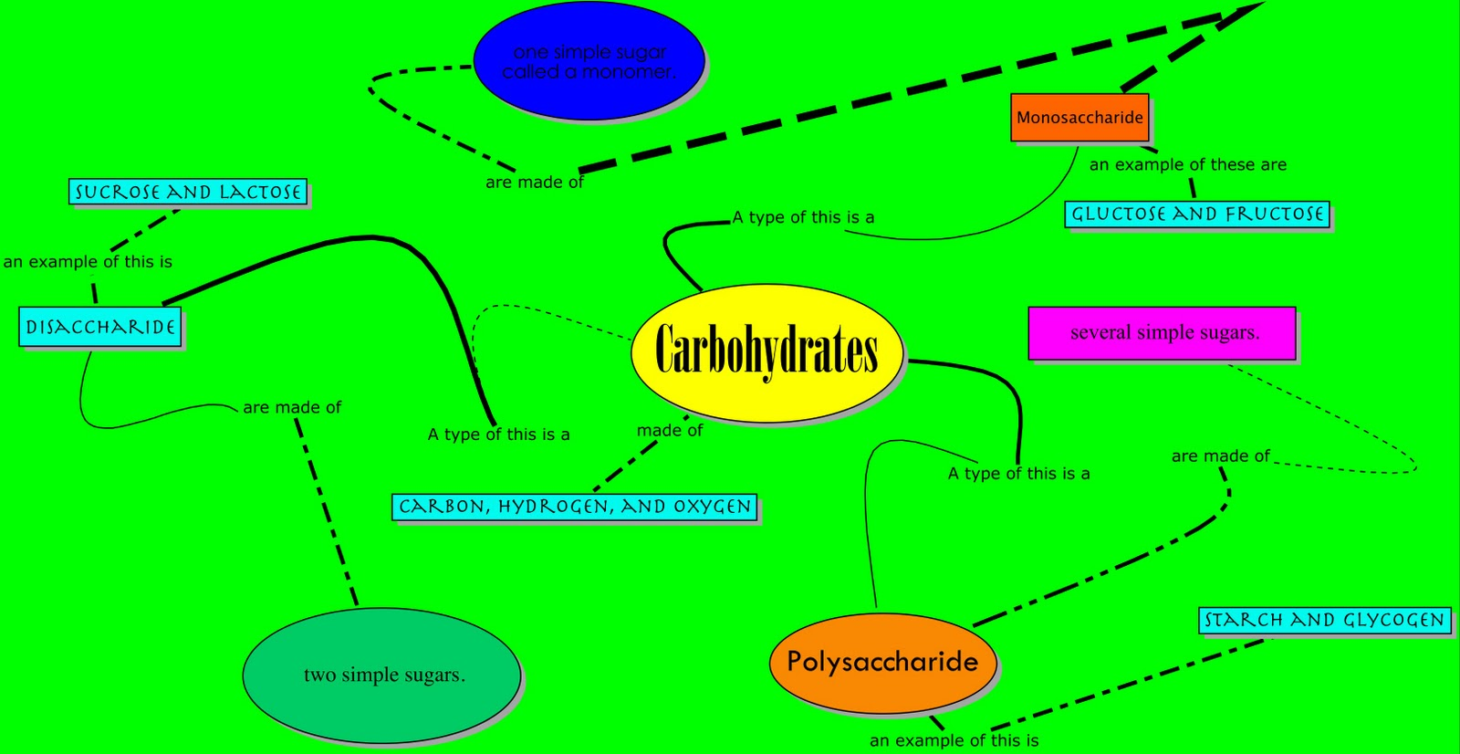 Dillon S Bio Blog Carbohydrate Concept Map