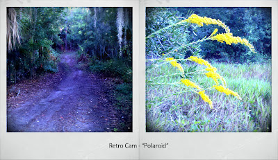 Florida Image Tools: Retro Cam app for Android camera/phones