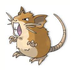 Pokemon What Level Does Rattata Evolve