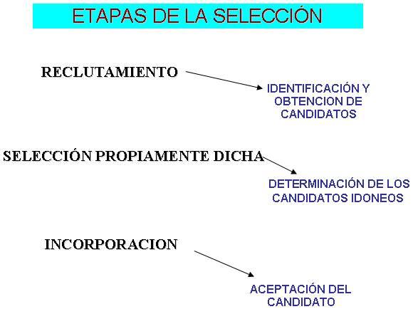 Red Acciones Cesar Proceso De Seleccion