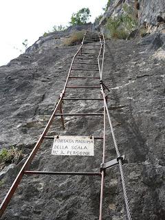 Eine der langen Leitern