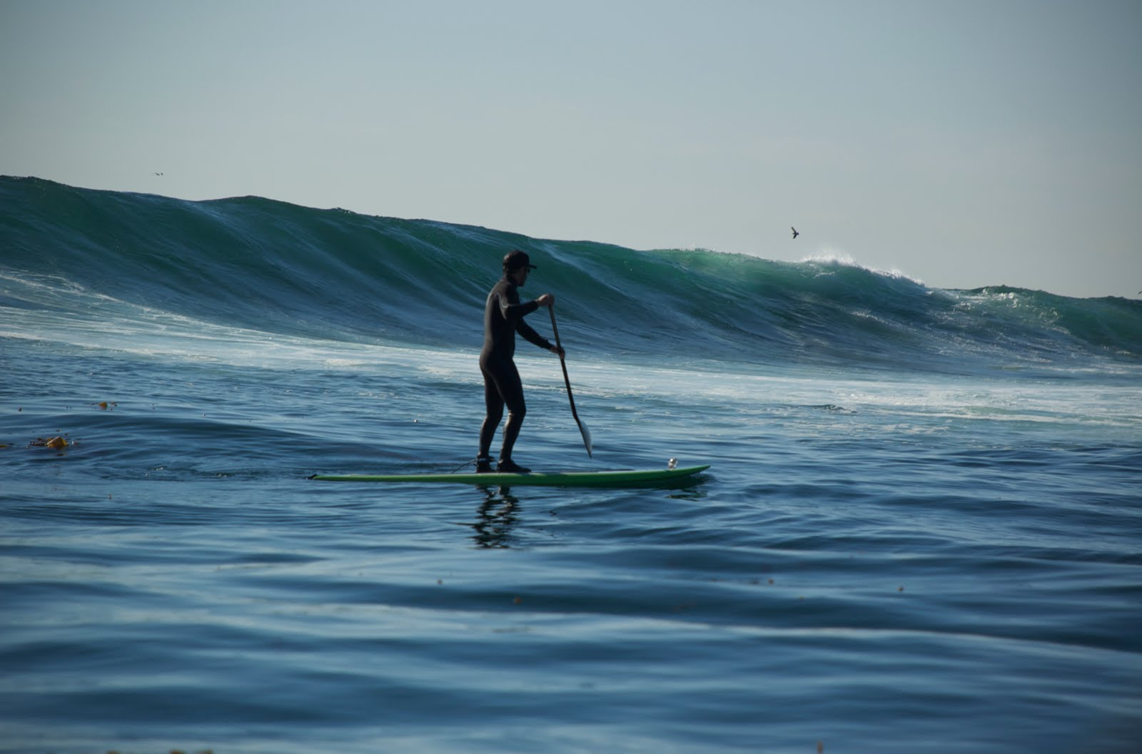 Stand Up Paddle Surfing Out There Stand Up Paddling Some