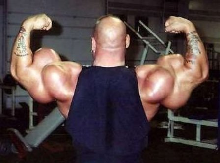 Worlds Largest Biceps - Airliners net