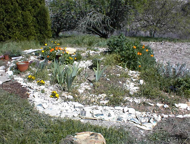 Expanding and Improving the Herb Garden