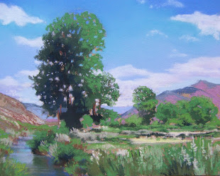 """ COTTONWOOD BY THE RIVER """