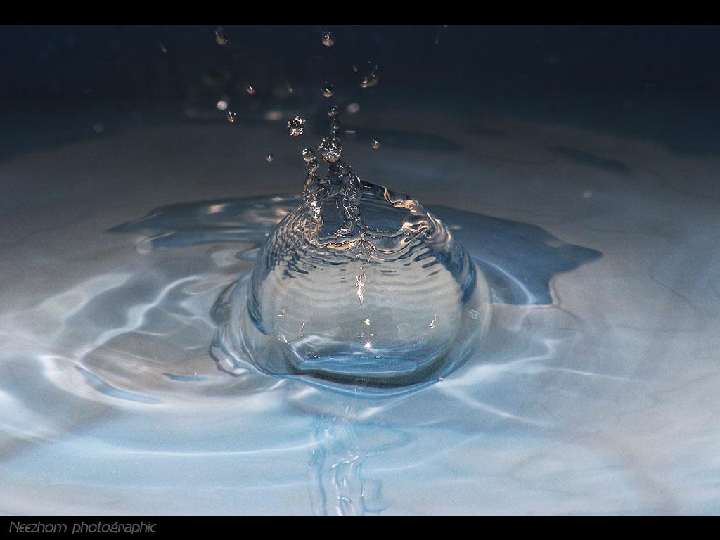 Liquid macro picture
